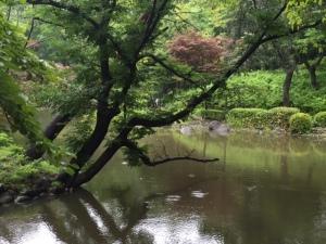 Arisugawa rain 1